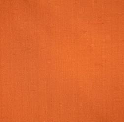 Pumpkin Soft Velvet